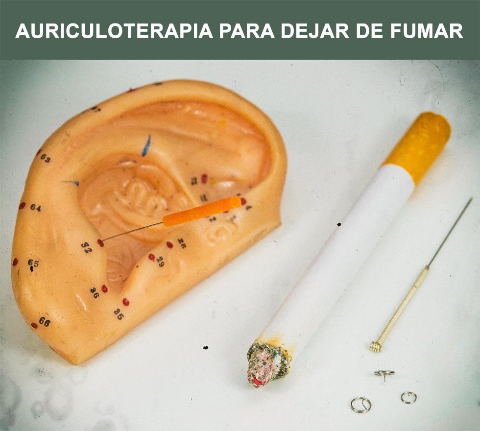 Puntos de la oreja utilizados en la auriculoterapia para dejar fumar