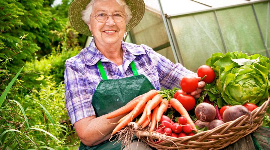 9 hábitos saludables para vivir más tiempo: dieta saludable