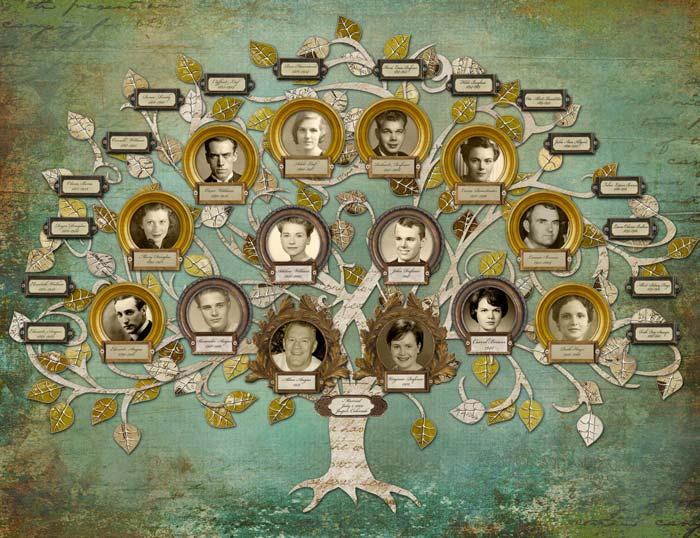El ciclo evolutivo de la familia