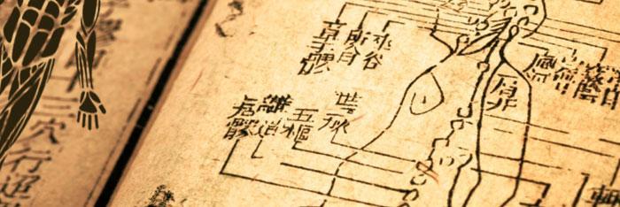 El cuerpo humano en medicina china