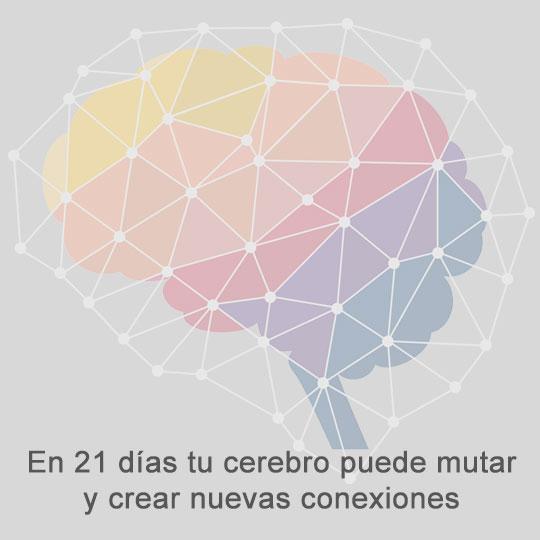 en solo 21 días tu cerebro puede mutar y crear nuevas conexiones