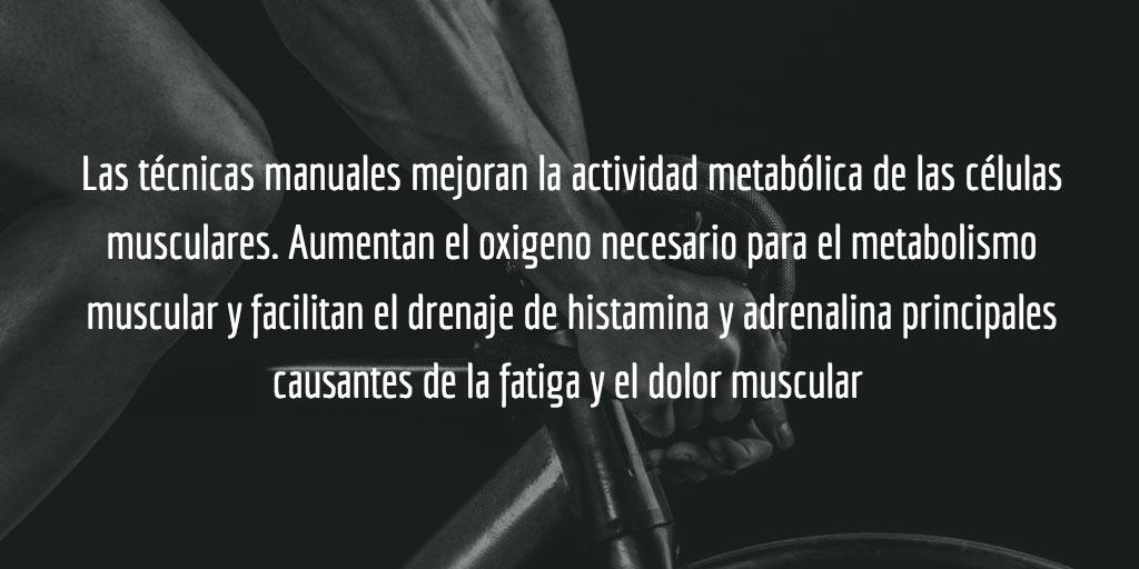 Las técnicas manuales mejoran la actividad metabólica de las células musculares.