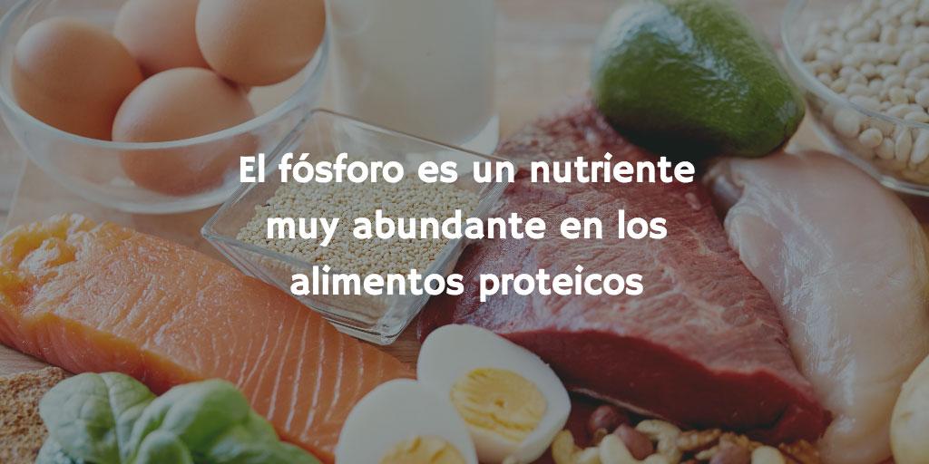 El fósforo es un nutriente muy abundante en los alimentos proteicos (carnes, pescados, legumbres, quesos)