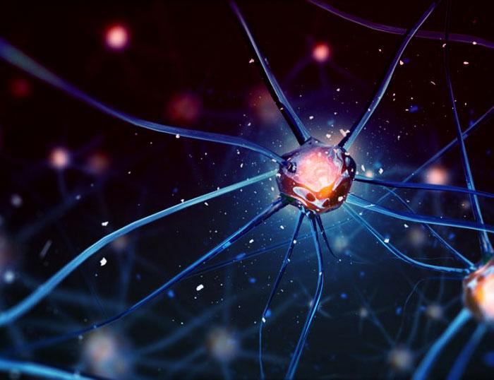 Aprende a cambiar la forma de ver las cosas, cambiando la memoria celular