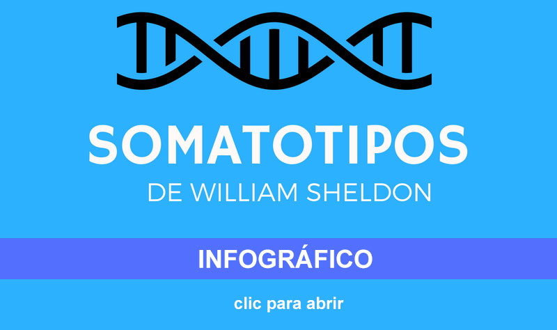 Los somatotipos de William Sheldon