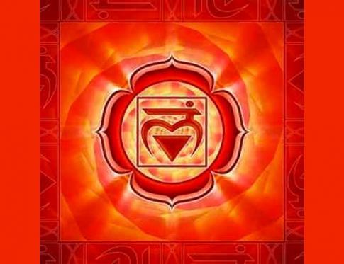 Primer chakra o Muladhara en Sánscrito
