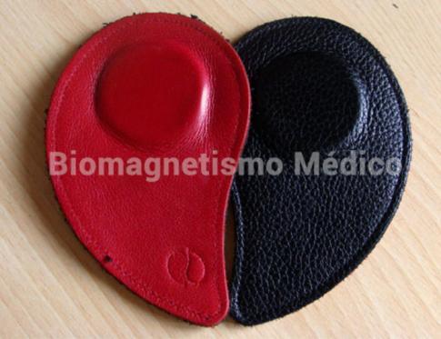 ¿Conoces en qué consiste el Biomagnetismo Médico?