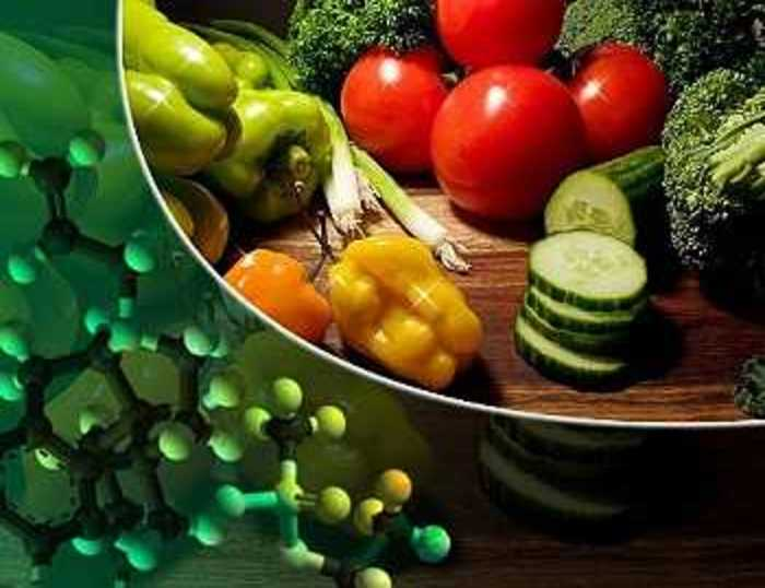 Nutrición elemental ignorada intencionalmente