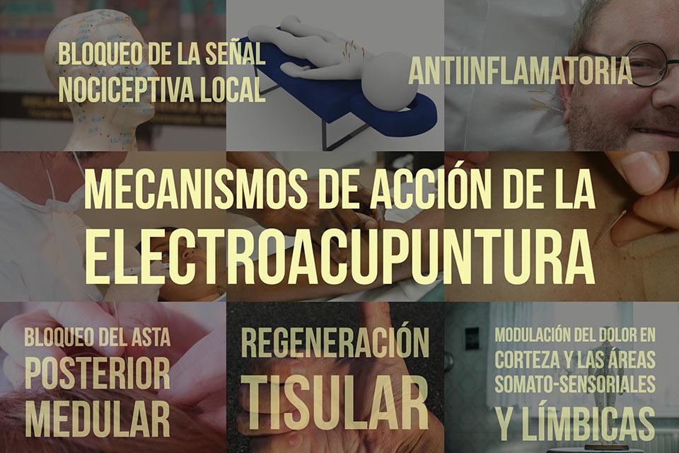 Mecanismos de acción de la electroacupuntura