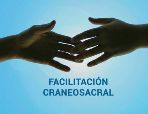 Facilitación Craneosacral