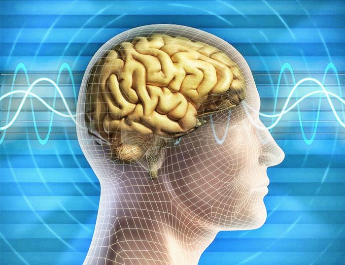 Relación entre emociones, energía y NeuroCiencia