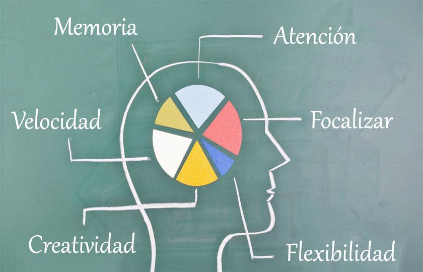 La evolución de Neurocoaching y Neurociencia y sus múltiples ámbitos de actuación
