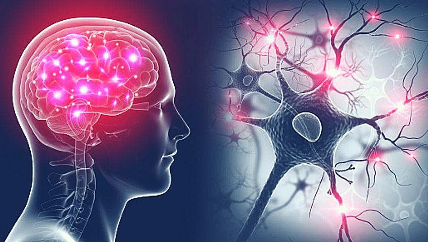 En qué consiste la neurociencia y su utilidad para comprender cómo elaboramos los pensamientos