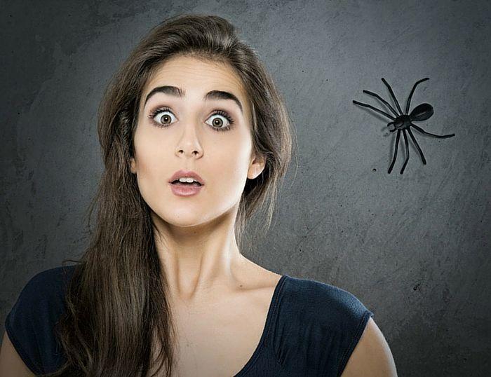 Fobias, un problema con solución