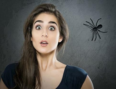 Cómo se forma una fobia