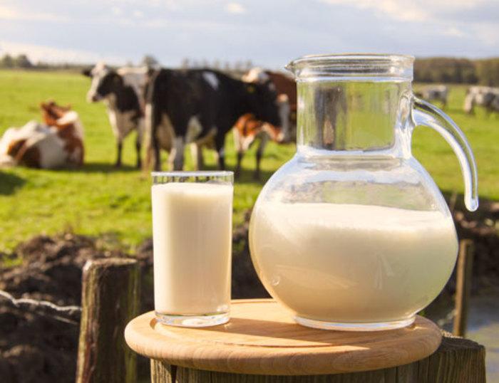 La leche: a cada uno lo que le corresponde