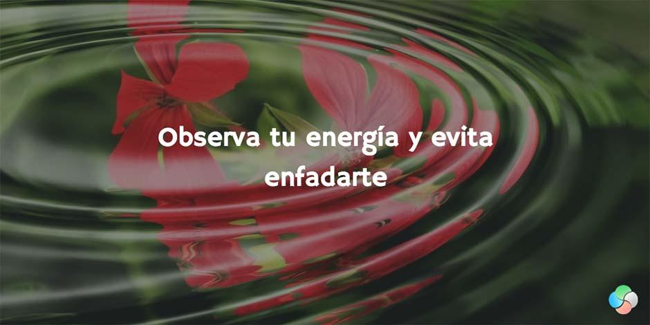 12 consejos del Feng Shui para alejar las malas energías de casa: observa tu energía