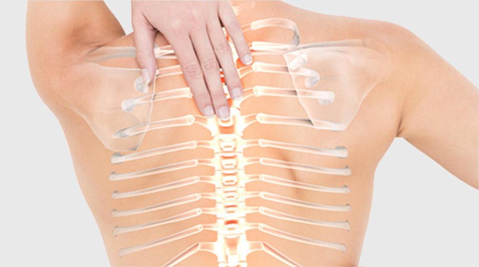 Sistema oseo-articular
