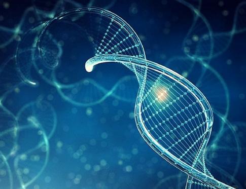 Conociendo en qué consiste la biodescodificacion