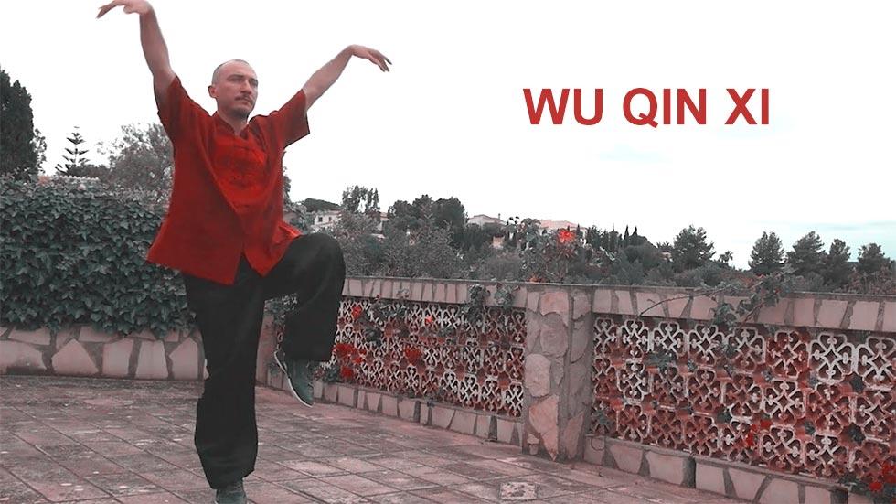 Qigong - práctica de wu qin xi o forma de los cinco animales