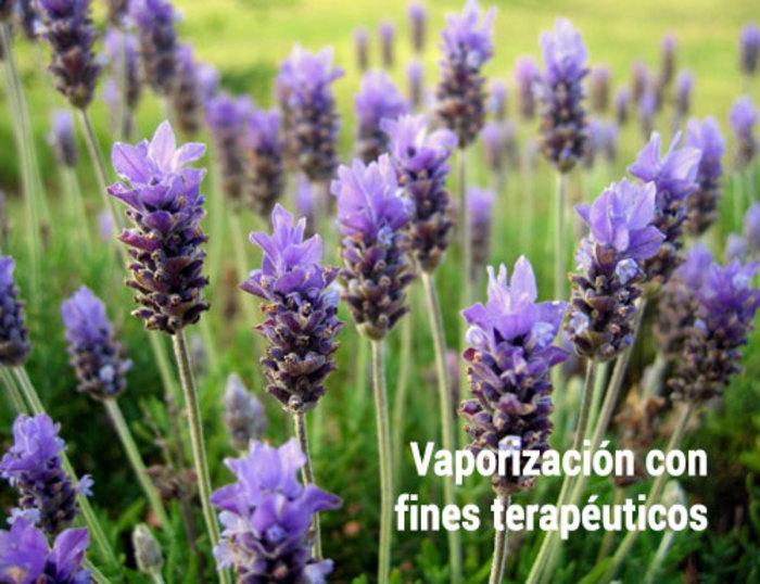 La vaporización con fines terapéuticos