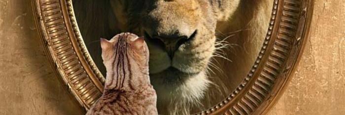 6 Maneras de ver al león en el espejo