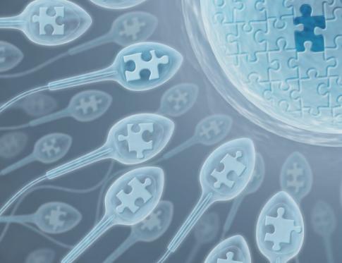 Cómo mejorar la fertilidad masculina con acupuntura