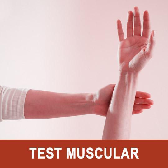 Ejemplo del test muscular (también llamado test kinesiológico o test energético)