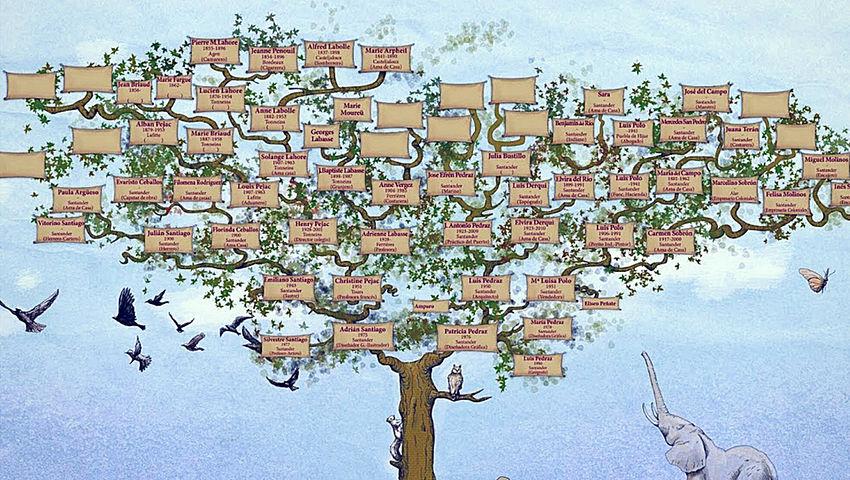 Importante realizar el árbol generacional en la terapia transgeneracional
