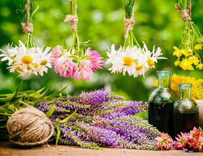 Qué hacen nuestras emociones - La terapia floral al rescate