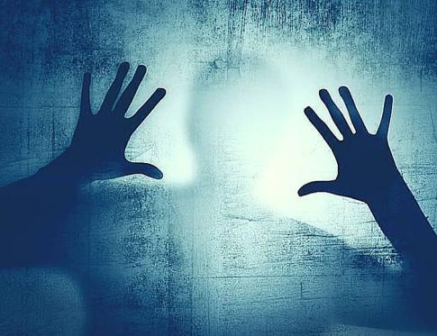 El miedo se aprende y se desaprende