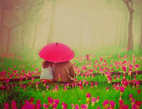 Las flores de bach y las relaciones