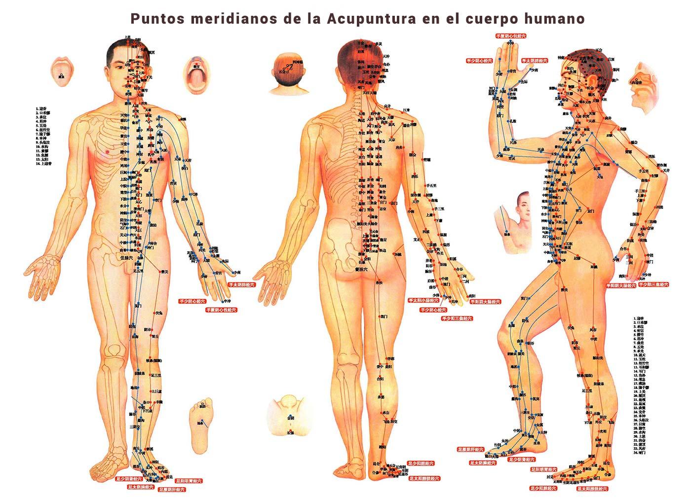 Resultado de imagen para que es la acupuntura