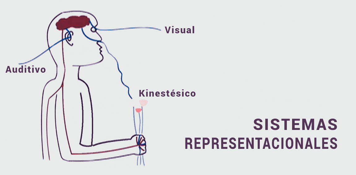 Sistemas representacionales en la PNL