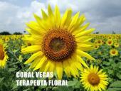 Coral Vegas Diez