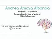 Andrea Amaya Albardiav