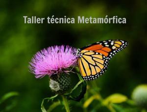 Taller: Técnica metamórfica