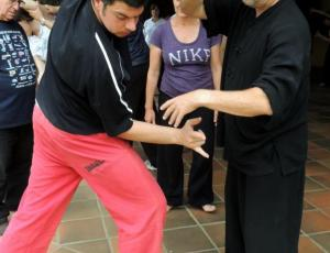 Chi-kung (qigong) de los 5 animales (Dr. Hua Tuo)