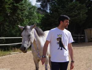 Taller de coaching con caballos