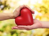 Libera tu corazón a través del perdón