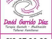 David Garrido Díaz