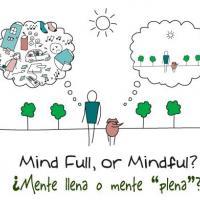 Curso de mindfulness y meditación