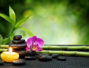 Presentación: Terapias, meditación y limpieza energética