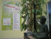 Centros Mayab