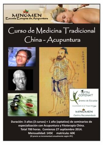 Curso Profesional Medicina Tradicional China (Acupuntura + MTC)