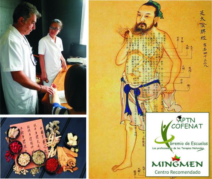 Curso Básico de Iniciación a la Medicina Tradicional China