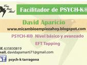 David Aparicio Martinez