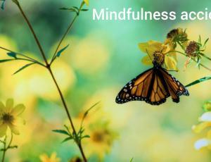 Curso de mindfulness para el estrés y la ansiedad