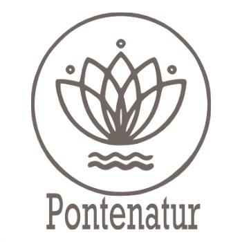 Pontenatur