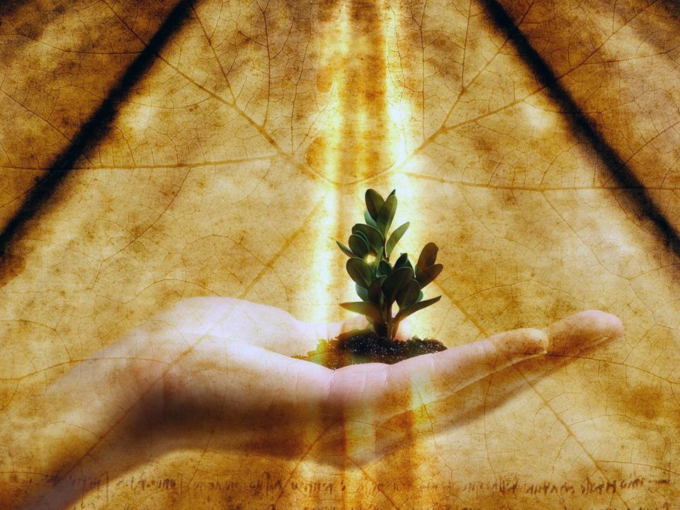 Desarrollo Personal: Desarrollo Personal Y Crecimiento Personal